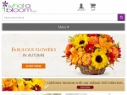 What a Bloom Promo Codes October 2018
