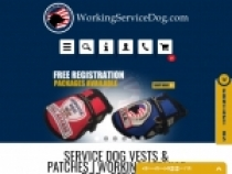 Working Service Dog $2 OFF Full Access Plastic Collar Tag