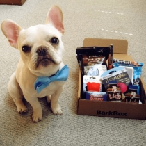 Up To 27% OFF 12-Month Subscription At BarkBox